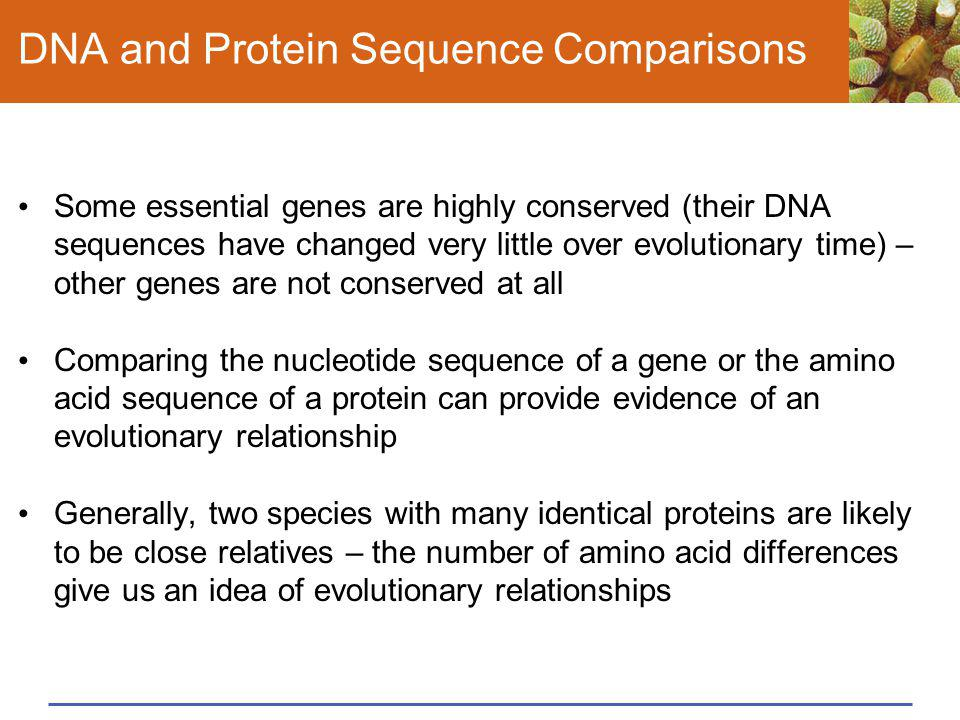 DNA and Protein Sequence Comparisons