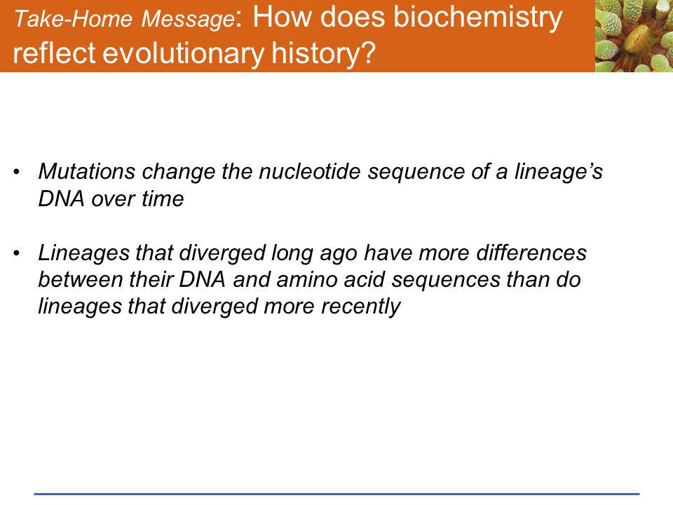 Take-Home Message: How does biochemistry reflect evolutionary history