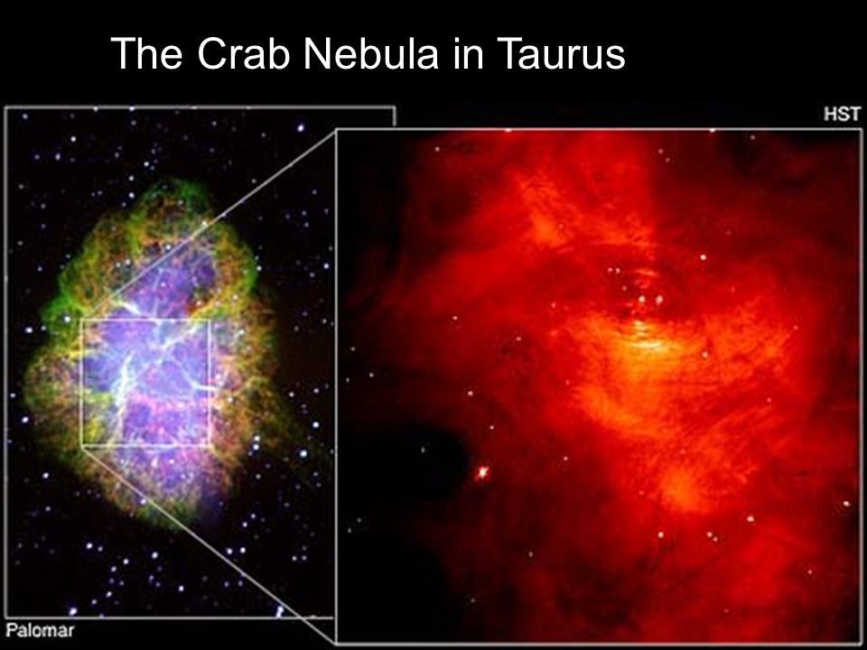 The Crab Nebula in Taurus