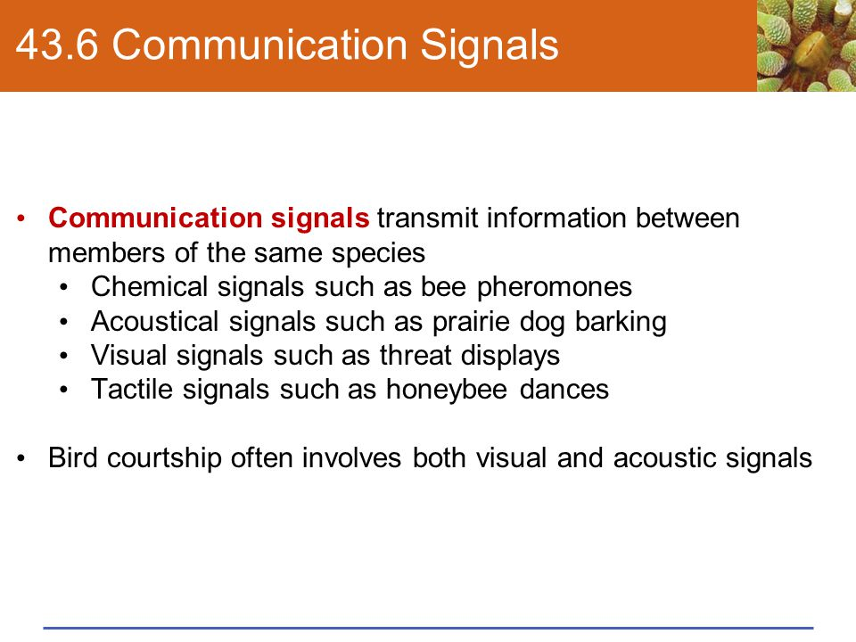 43.6 Communication Signals