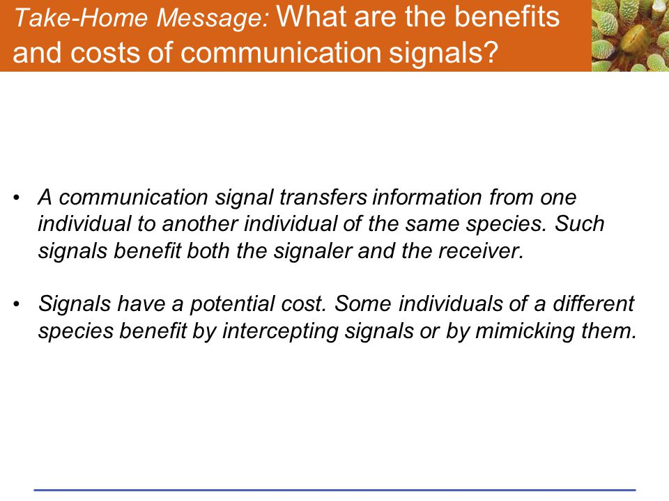 Take-Home Message: What are the benefits and costs of communication signals