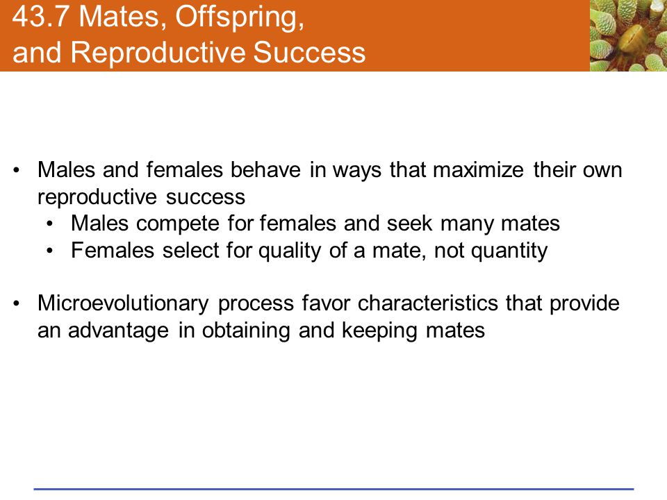 43.7 Mates, Offspring, and Reproductive Success