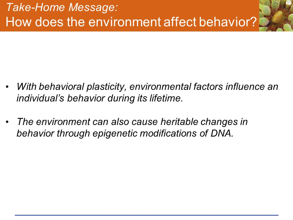 Take-Home Message: How does the environment affect behavior