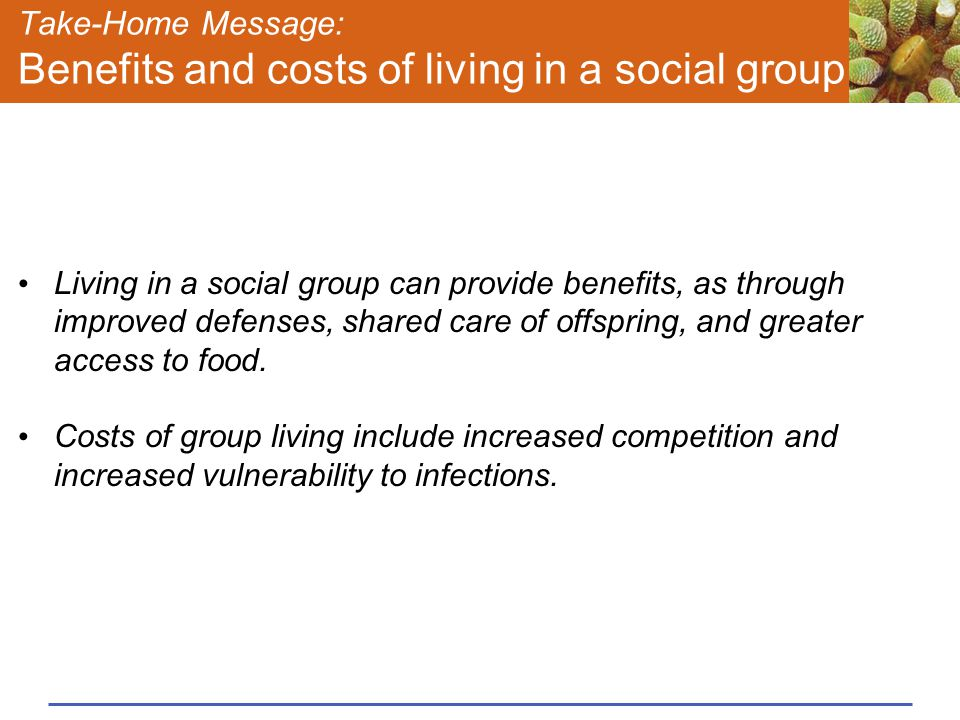 Take-Home Message: Benefits and costs of living in a social group
