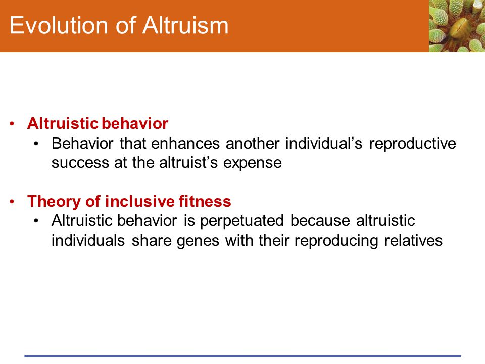 Evolution of Altruism Altruistic behavior