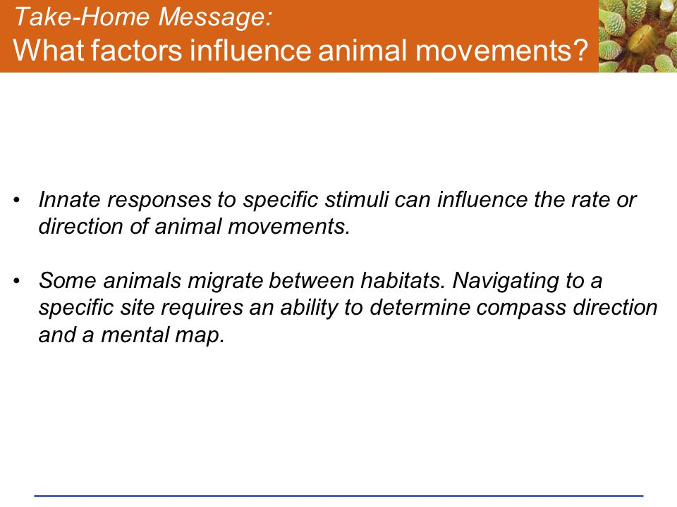 Take-Home Message: What factors influence animal movements