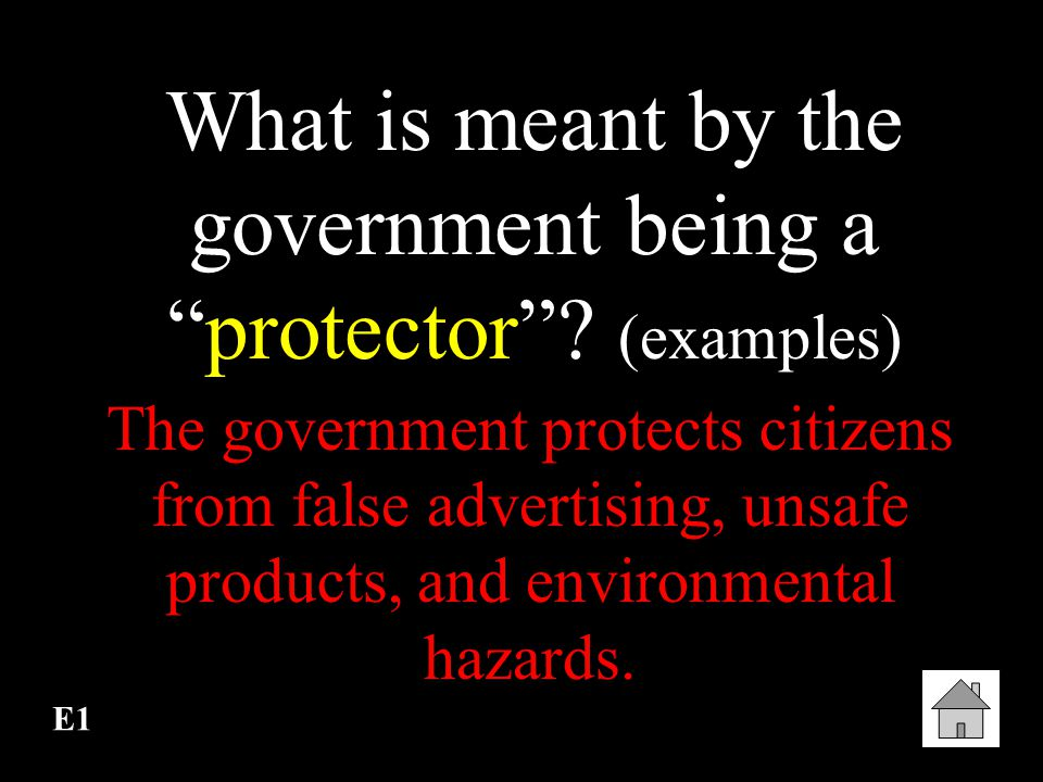 What is meant by the government being a protector (examples)