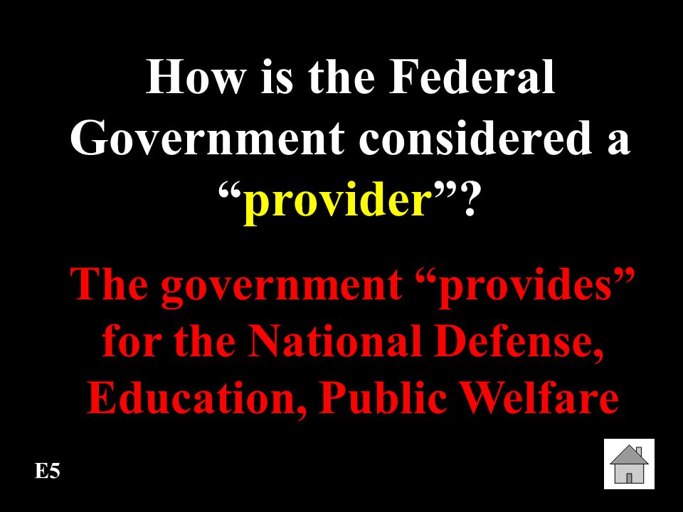 How is the Federal Government considered a provider