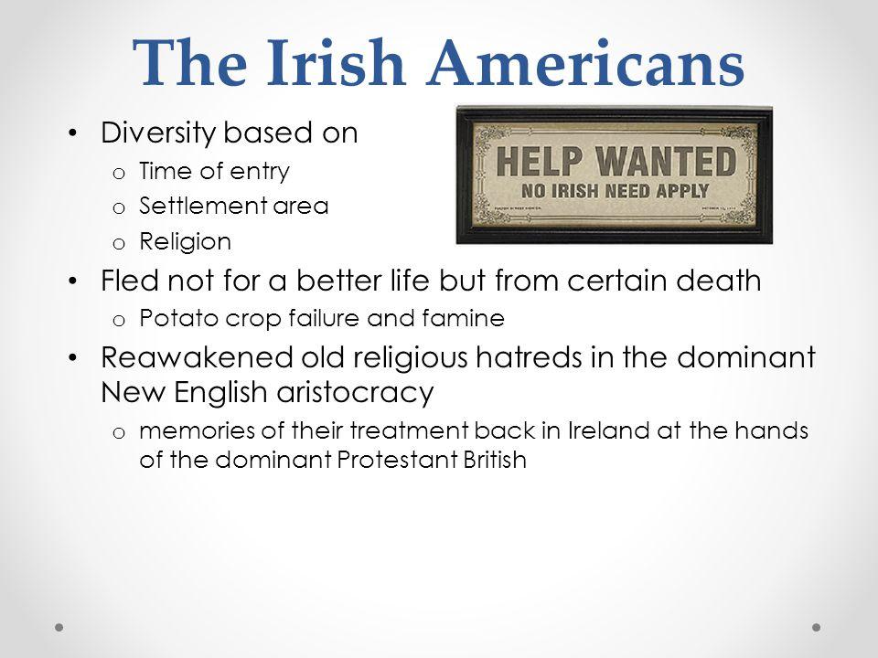 The Irish Americans Diversity based on