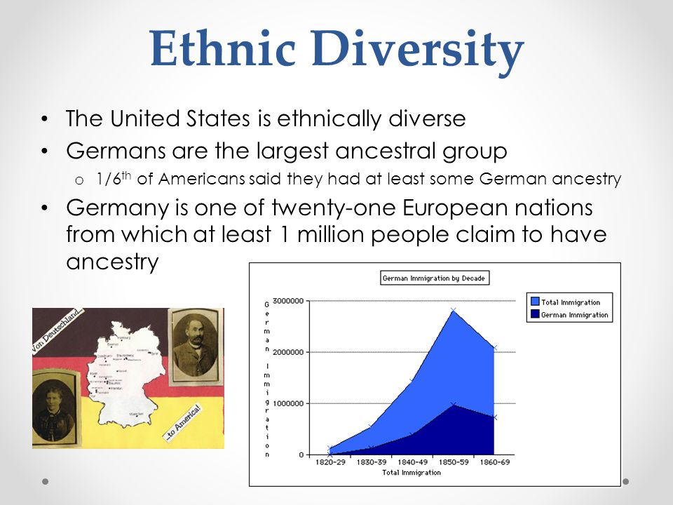 Ethnic Diversity The United States is ethnically diverse