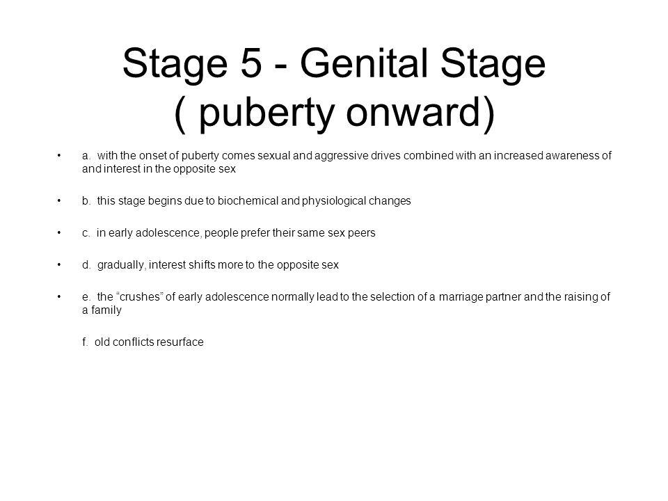 Stage 5 - Genital Stage ( puberty onward)