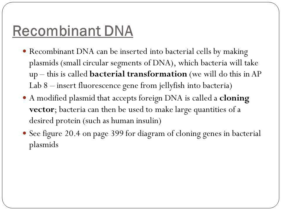 Recombinant DNA