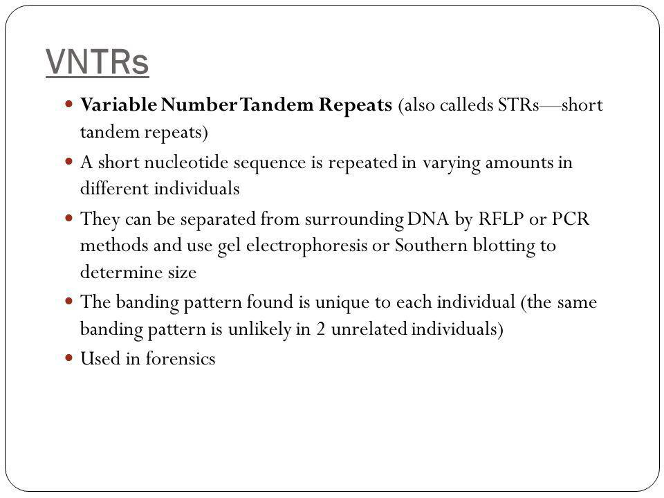 VNTRs Variable Number Tandem Repeats (also calleds STRs—short tandem repeats)