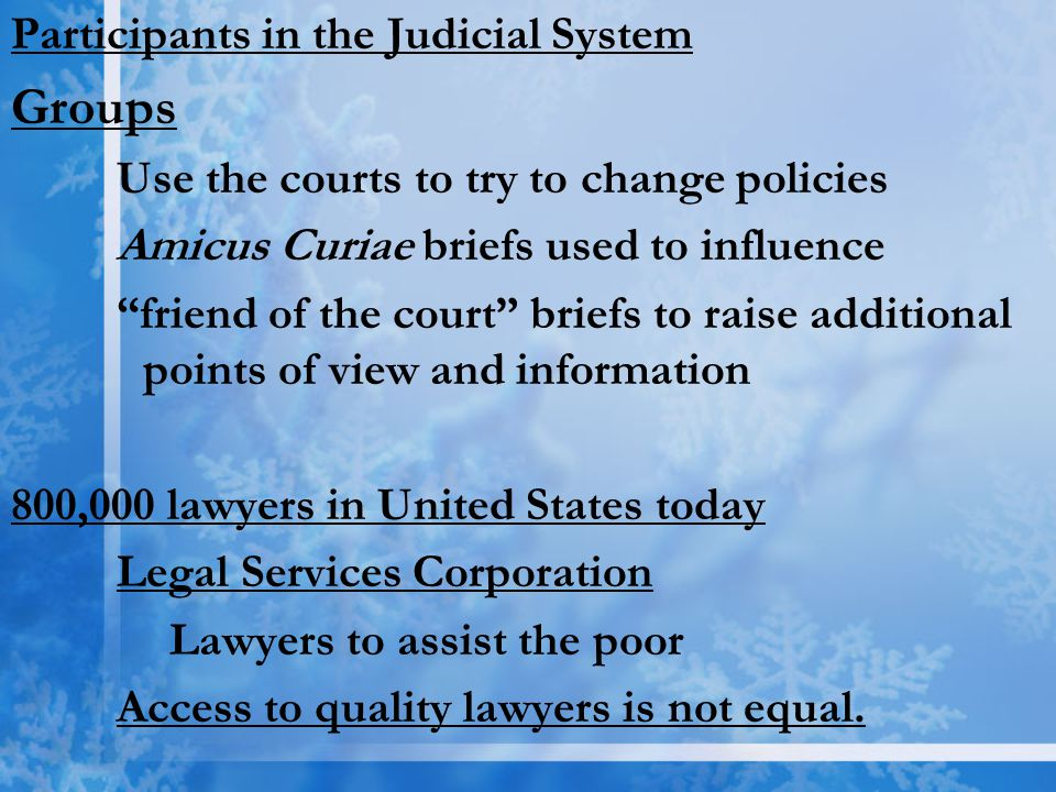 Groups Participants in the Judicial System