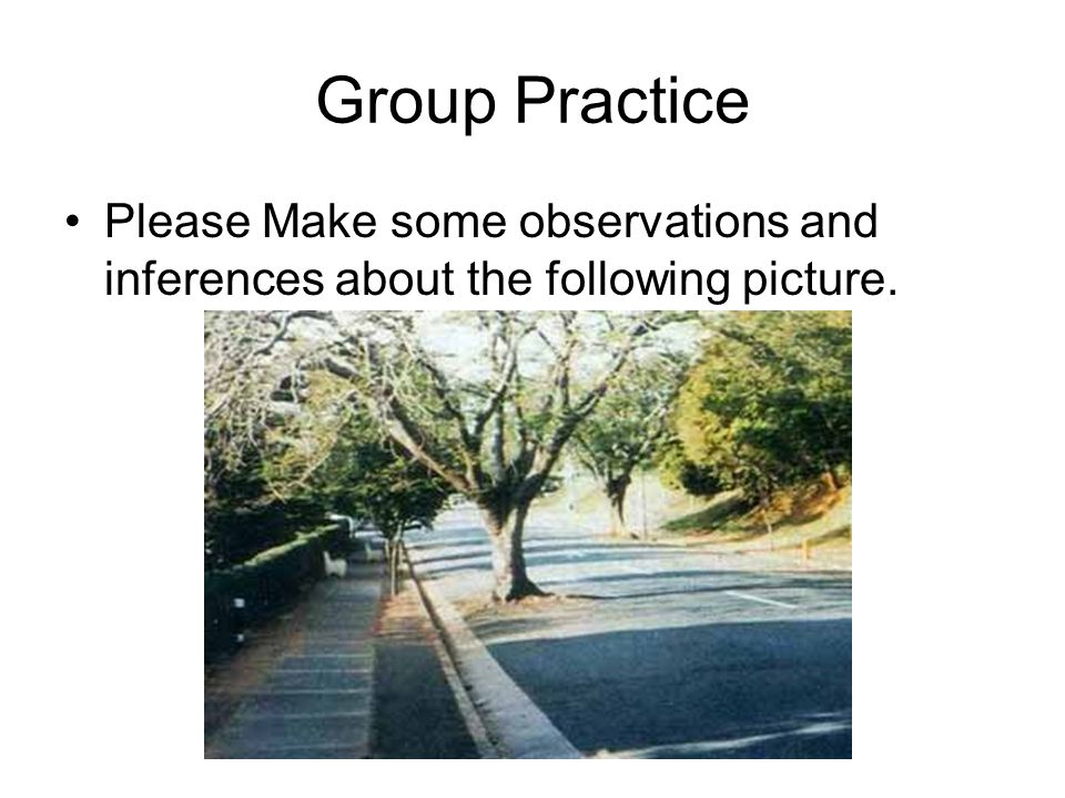 Group Practice Please Make some observations and inferences about the following picture.