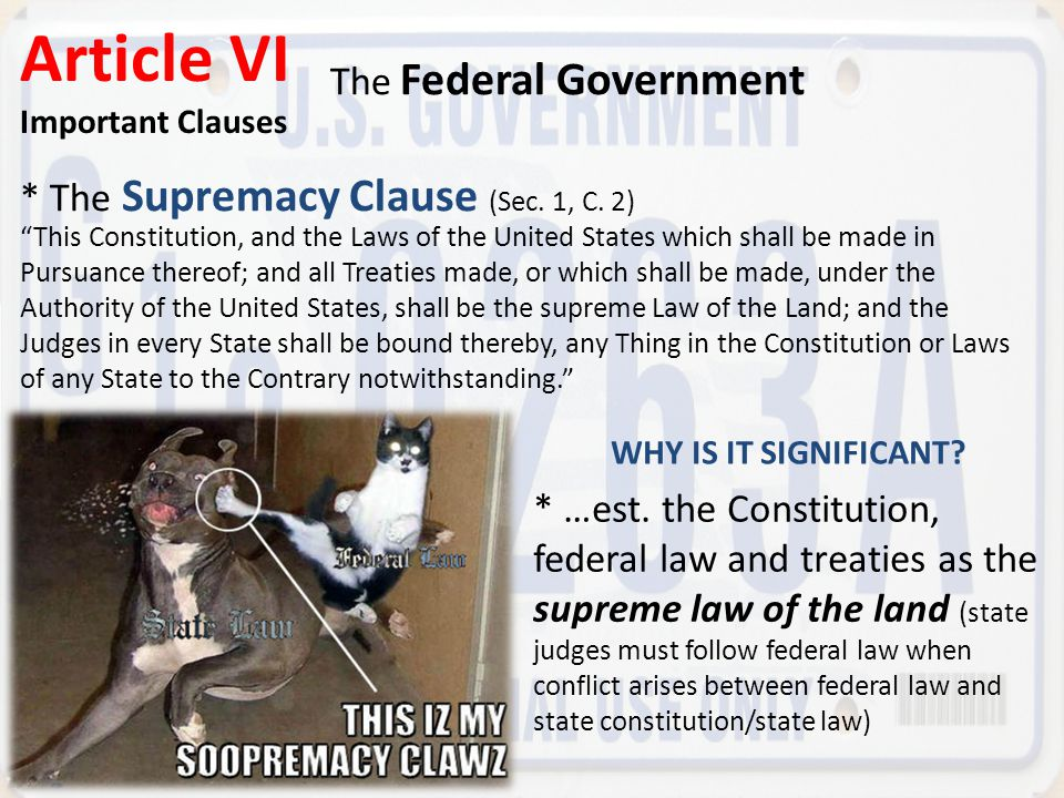 Article VI The Federal Government
