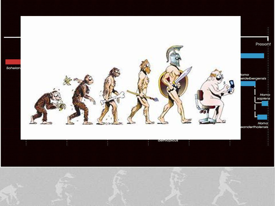 Evolution—Charles Darwin