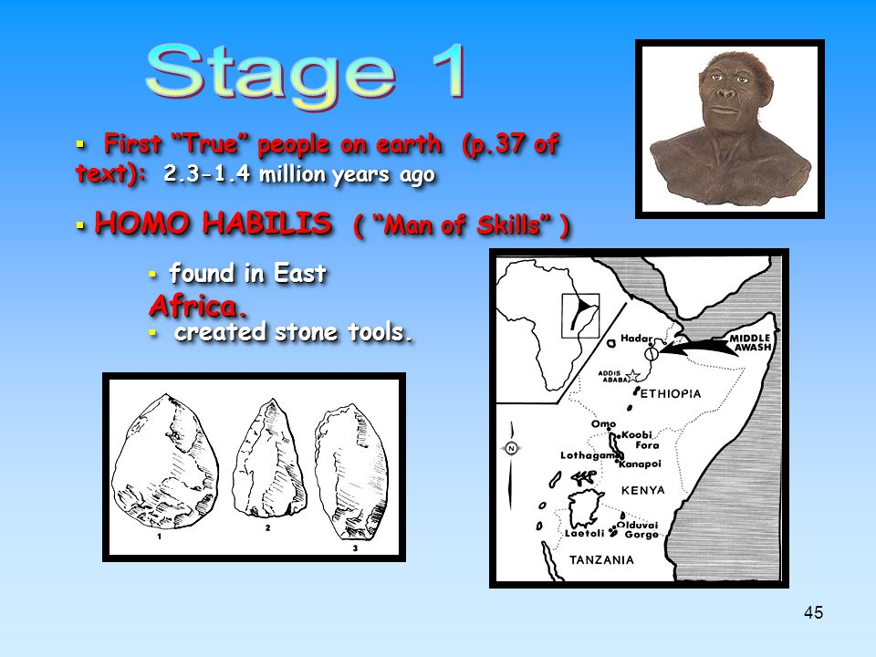 Stage 1 First True people on earth (p.37 of text): 2.3-1.4 million years ago. HOMO HABILIS ( Man of Skills )