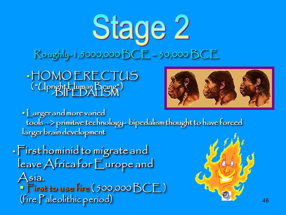 Stage 2 Roughly-1,5000,000 BCE – 30,000 BCE