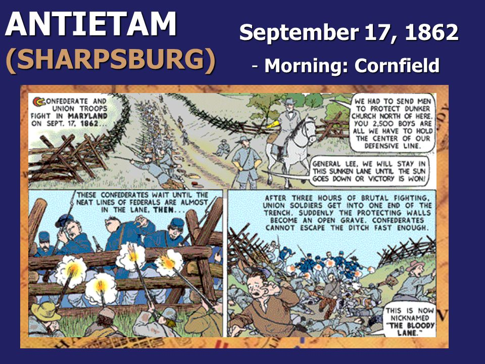 ANTIETAM (SHARPSBURG) September 17, 1862 Morning: Cornfield