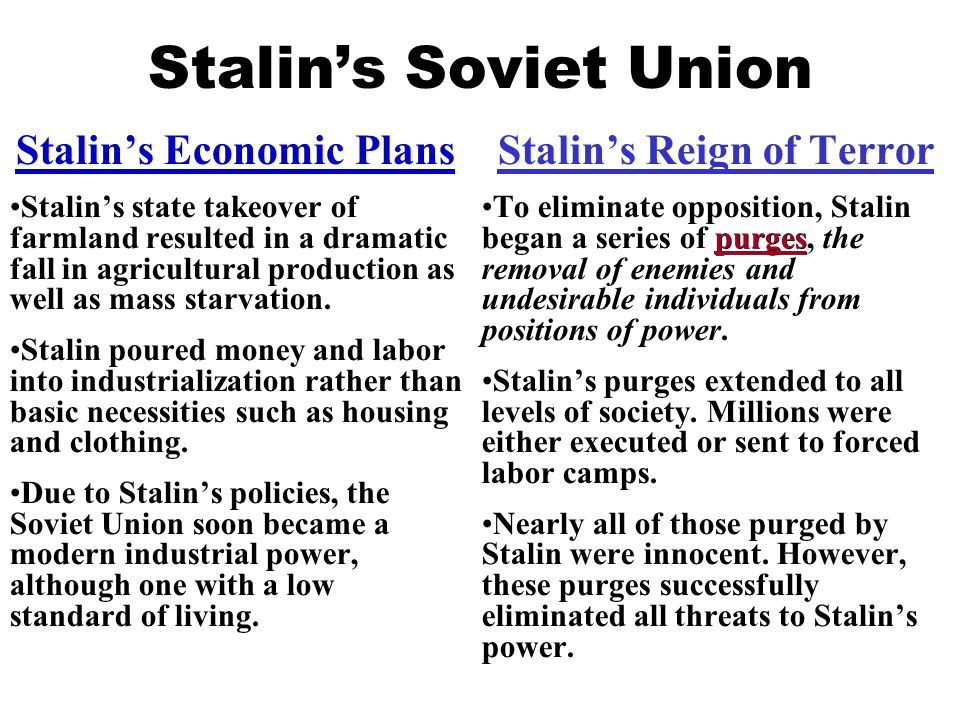 Stalin's Economic Plans Stalin's Reign of Terror