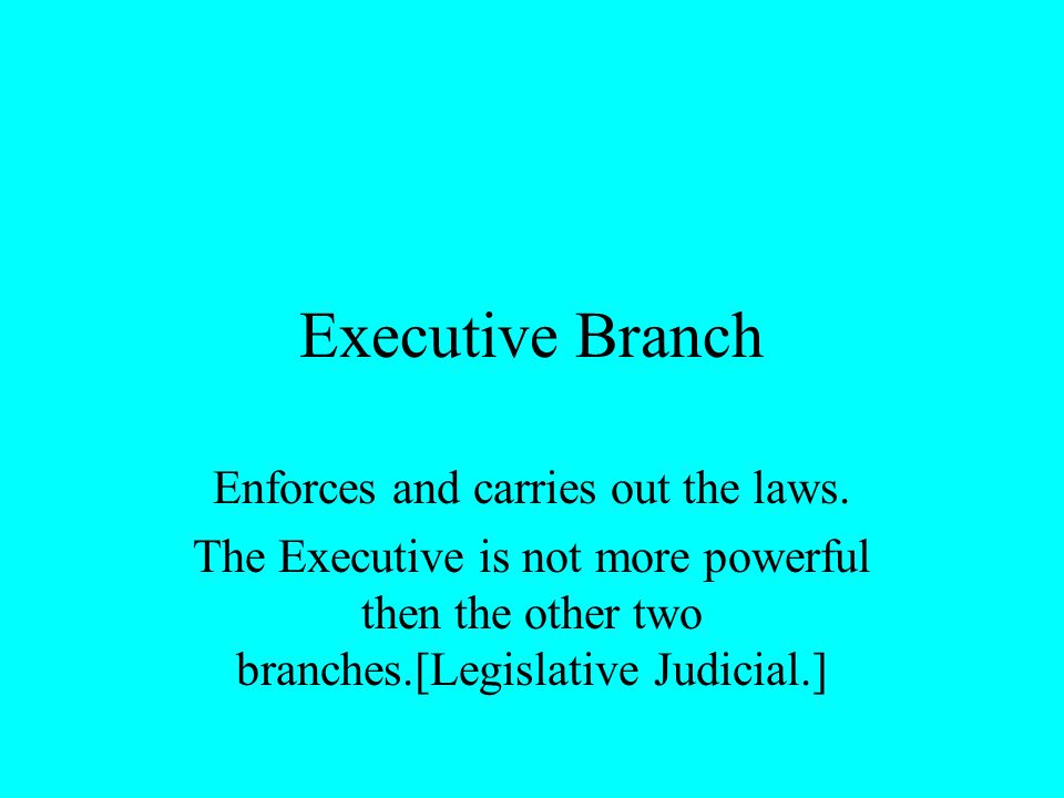 Enforces and carries out the laws.