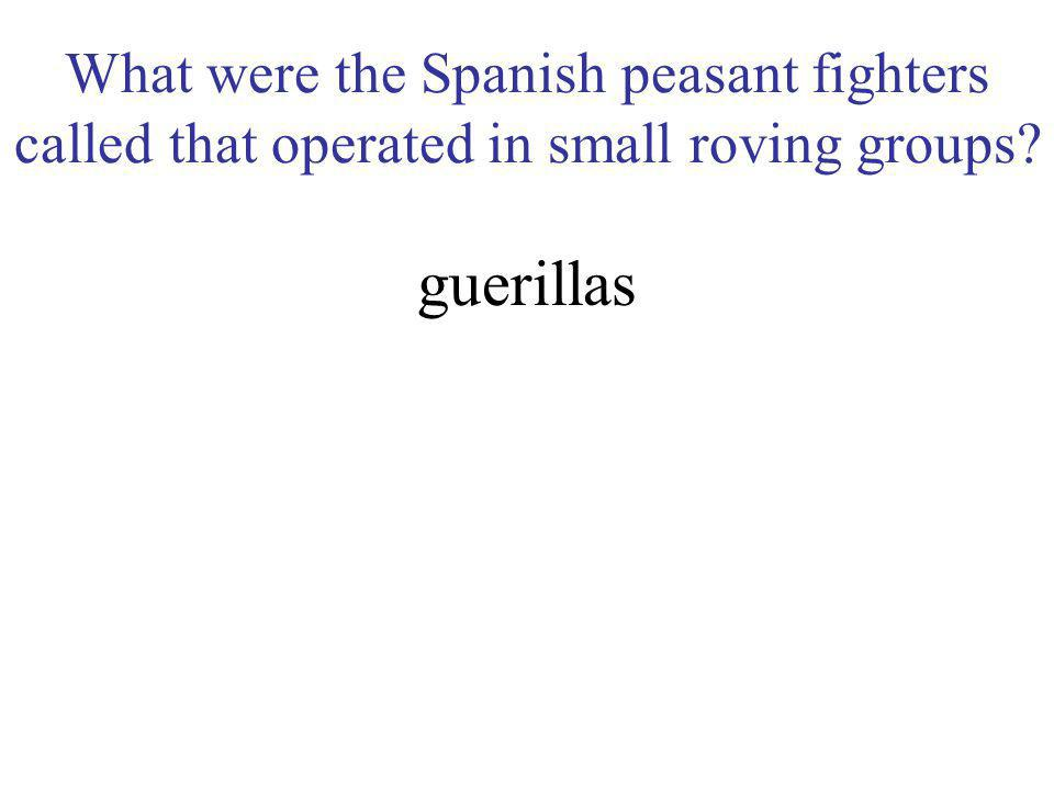 What were the Spanish peasant fighters called that operated in small roving groups