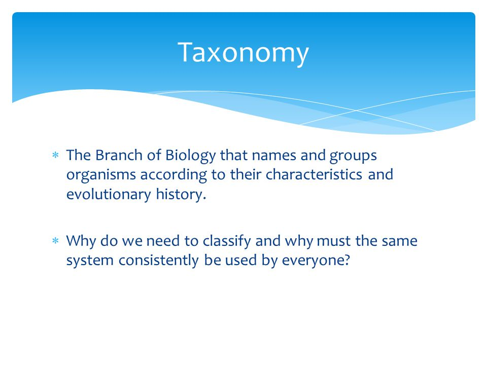 Taxonomy The Branch of Biology that names and groups organisms according to their characteristics and evolutionary history.