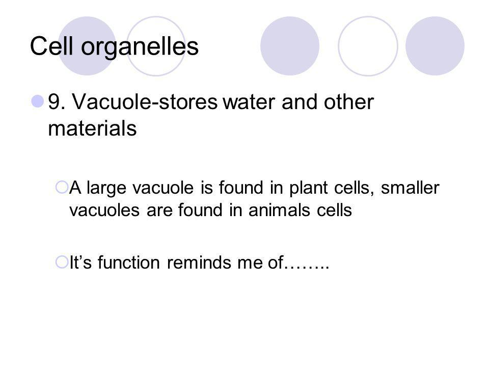 Cell organelles 9. Vacuole-stores water and other materials