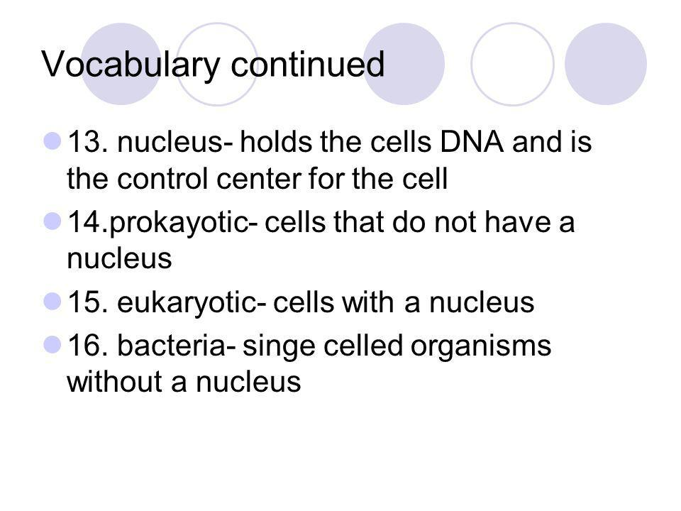 Vocabulary continued 13. nucleus- holds the cells DNA and is the control center for the cell. 14.prokayotic- cells that do not have a nucleus.