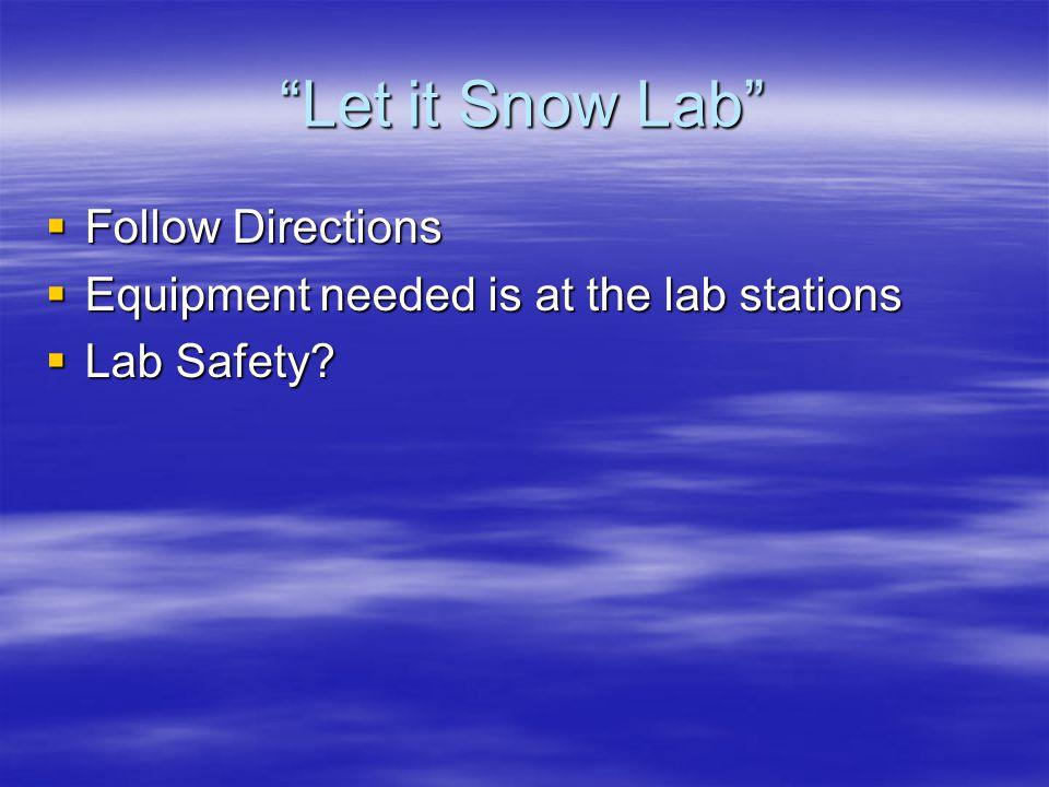 Let it Snow Lab Follow Directions