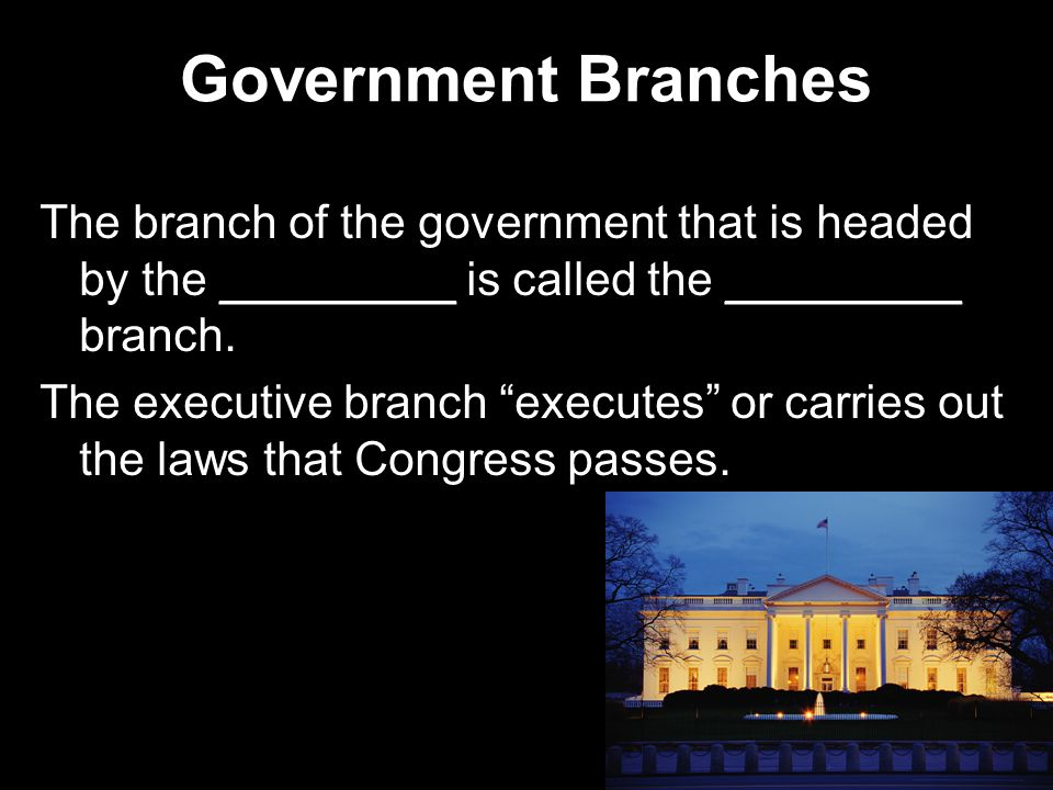 Government Branches The branch of the government that is headed by the _________ is called the _________ branch.