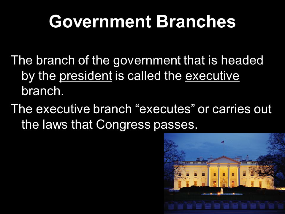 Government Branches The branch of the government that is headed by the president is called the executive branch.