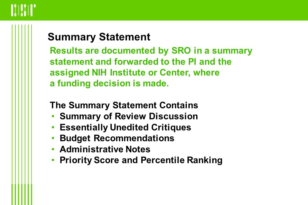 Summary Statement Results are documented by SRO in a summary