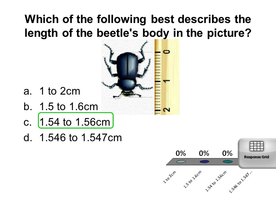 Which of the following best describes the length of the beetle s body in the picture