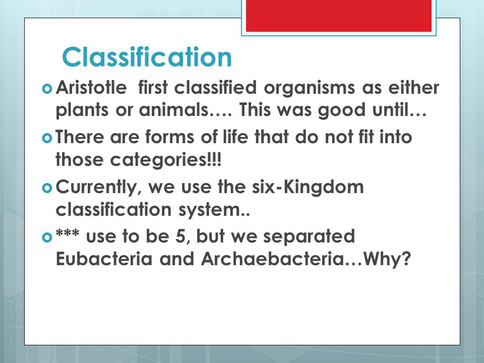 Classification Aristotle first classified organisms as either plants or animals…. This was good until…