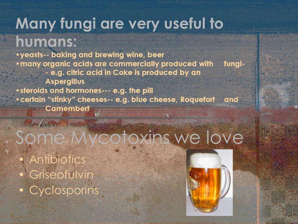 Some Mycotoxins we love