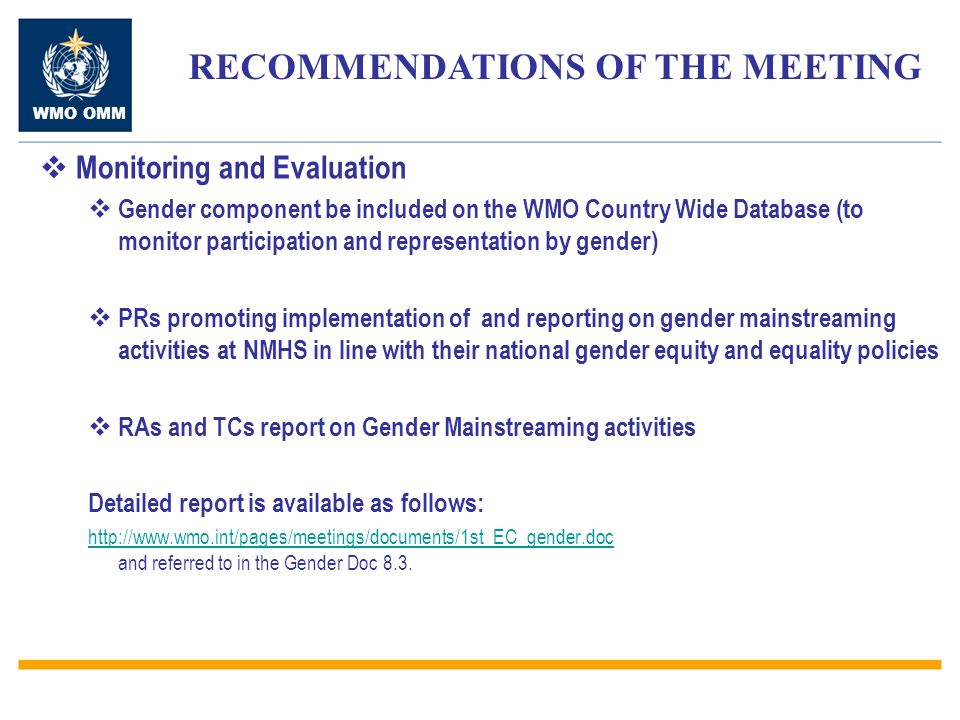 RECOMMENDATIONS OF THE MEETING