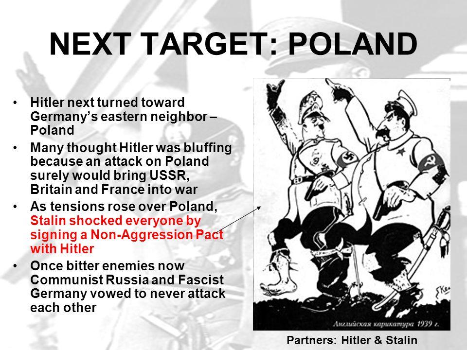Partners: Hitler & Stalin