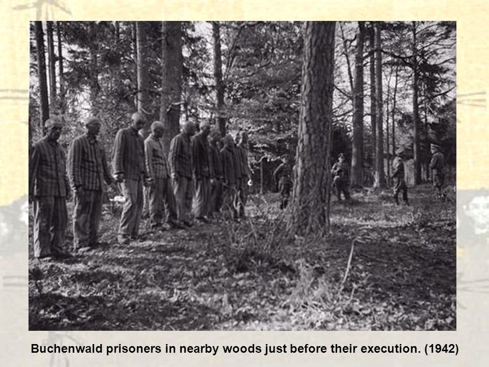 Buchenwald prisoners in nearby woods just before their execution