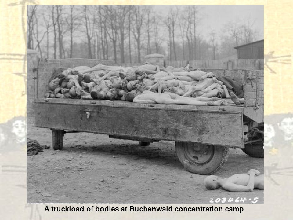A truckload of bodies at Buchenwald concentration camp