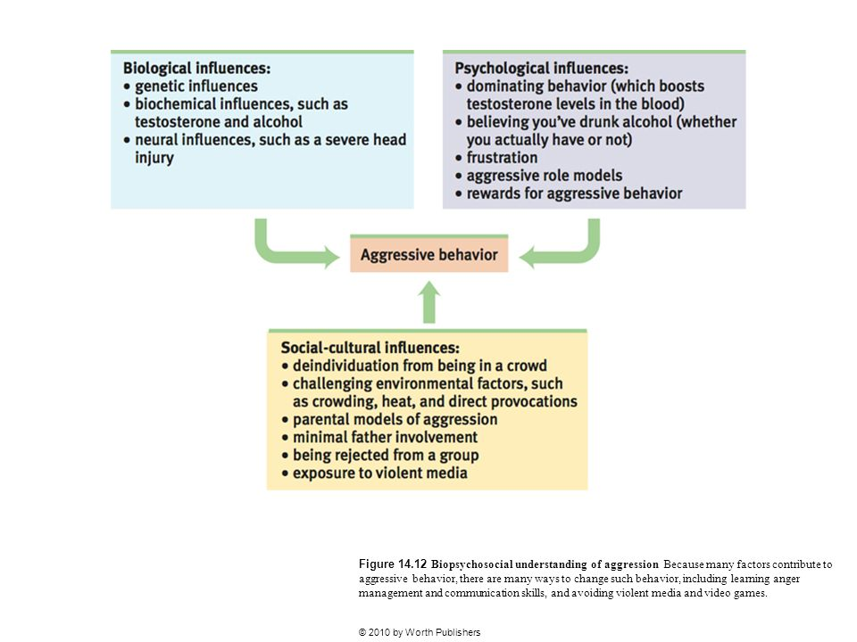 Figure 14.12 Biopsychosocial understanding of aggression Because many factors contribute to aggressive behavior, there are many ways to change such behavior, including learning anger management and communication skills, and avoiding violent media and video games.