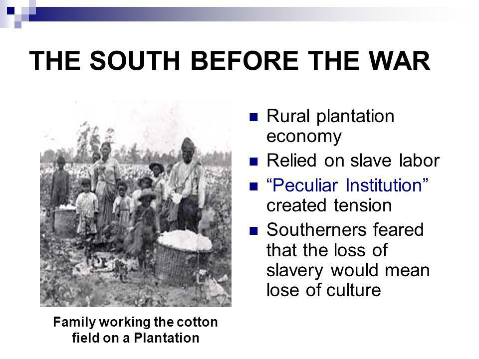 THE SOUTH BEFORE THE WAR