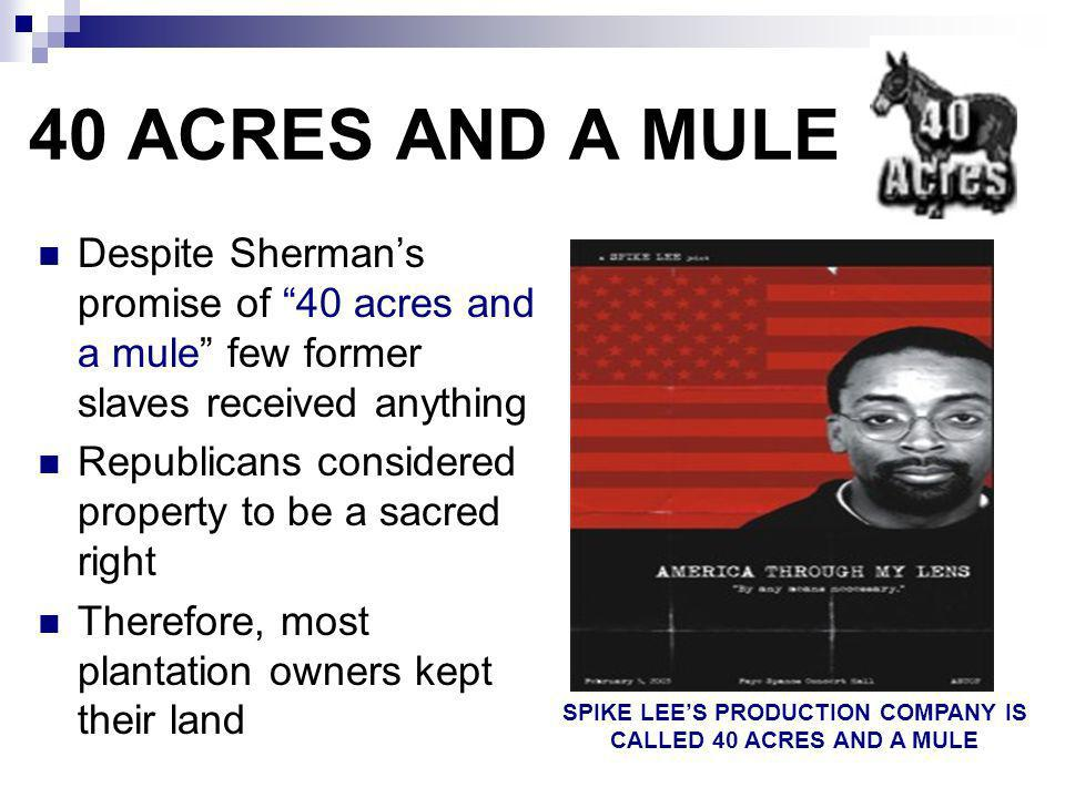 SPIKE LEE'S PRODUCTION COMPANY IS CALLED 40 ACRES AND A MULE
