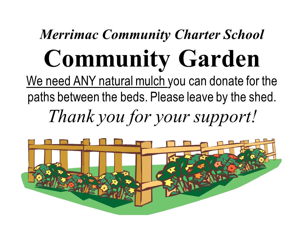Merrimac Community Charter School Community Garden We need ANY natural mulch you can donate for the paths between the beds.