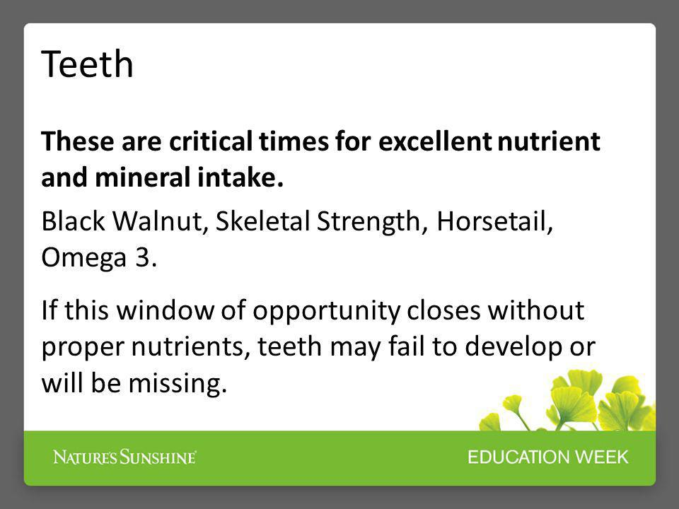 Teeth These are critical times for excellent nutrient and mineral intake. Black Walnut, Skeletal Strength, Horsetail, Omega 3.