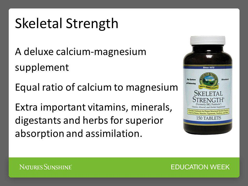 Skeletal Strength