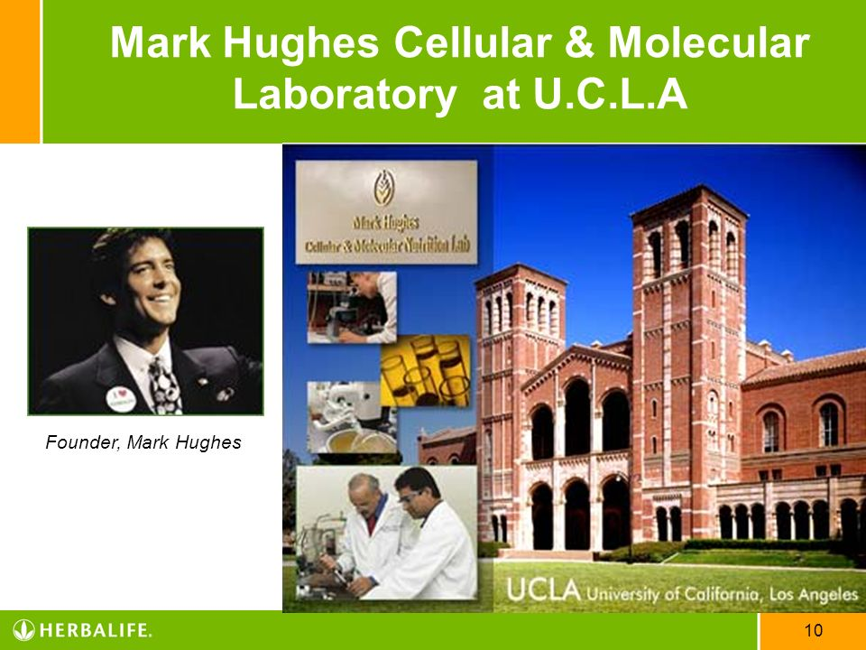 Mark Hughes Cellular & Molecular Laboratory at U.C.L.A