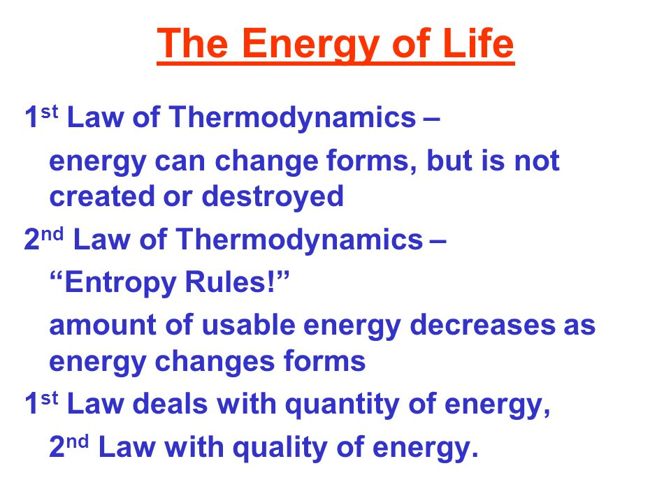 The Energy of Life 1st Law of Thermodynamics –