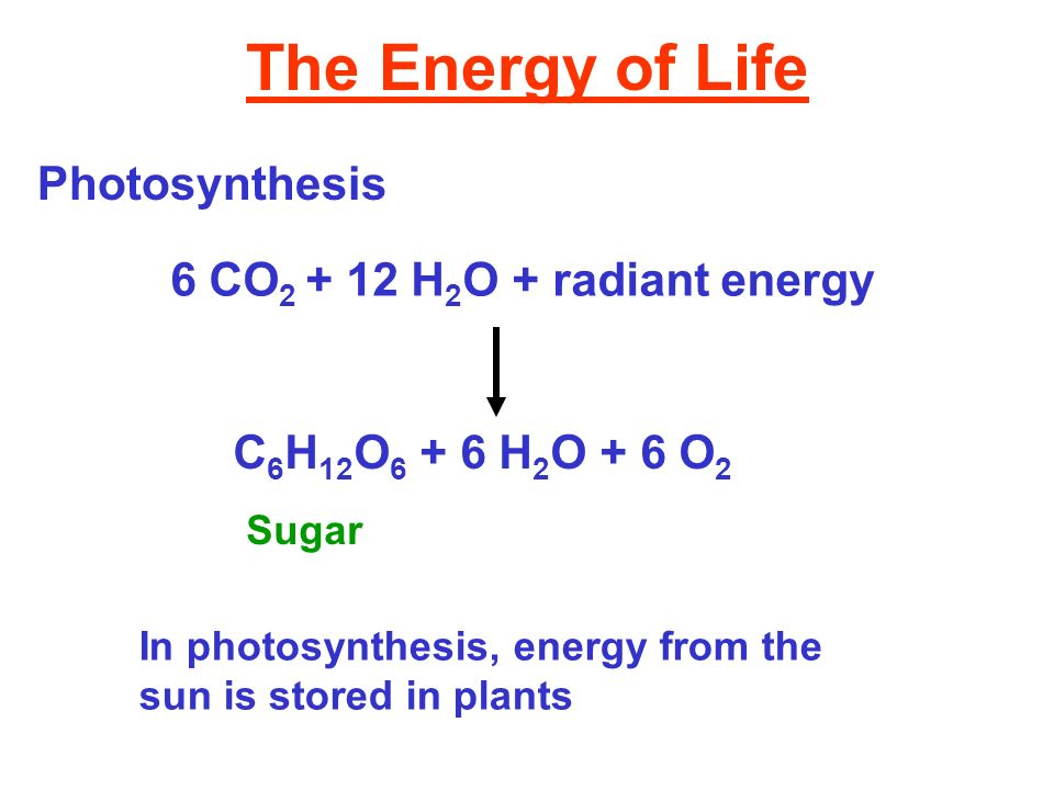 The Energy of Life Photosynthesis 6 CO2 + 12 H2O + radiant energy